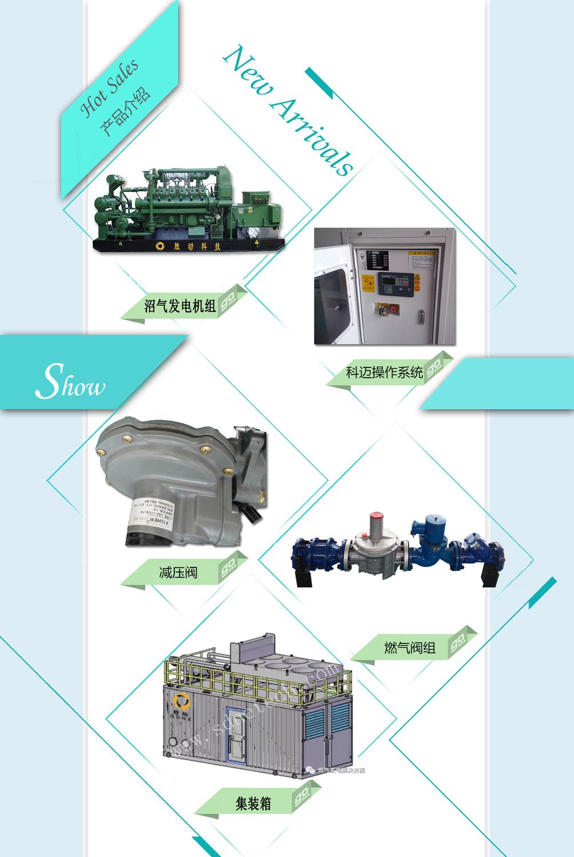 SDNE190w88优德用户注册w88优德官网中文版发电机产品图片副本.jpg